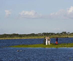 Serengeti National Park.png