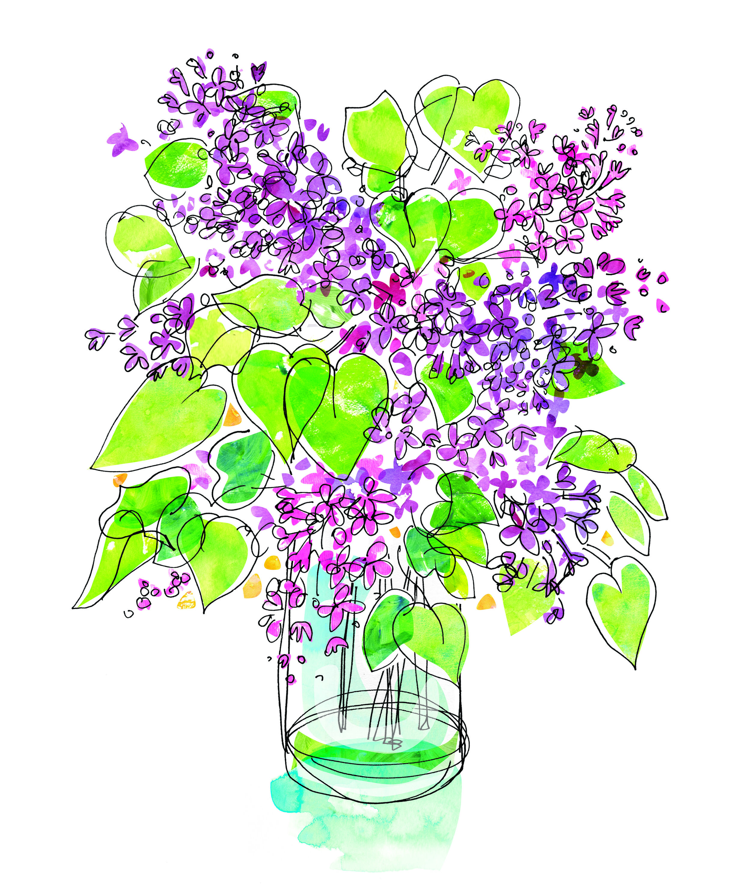 Lilac Spot Illustration