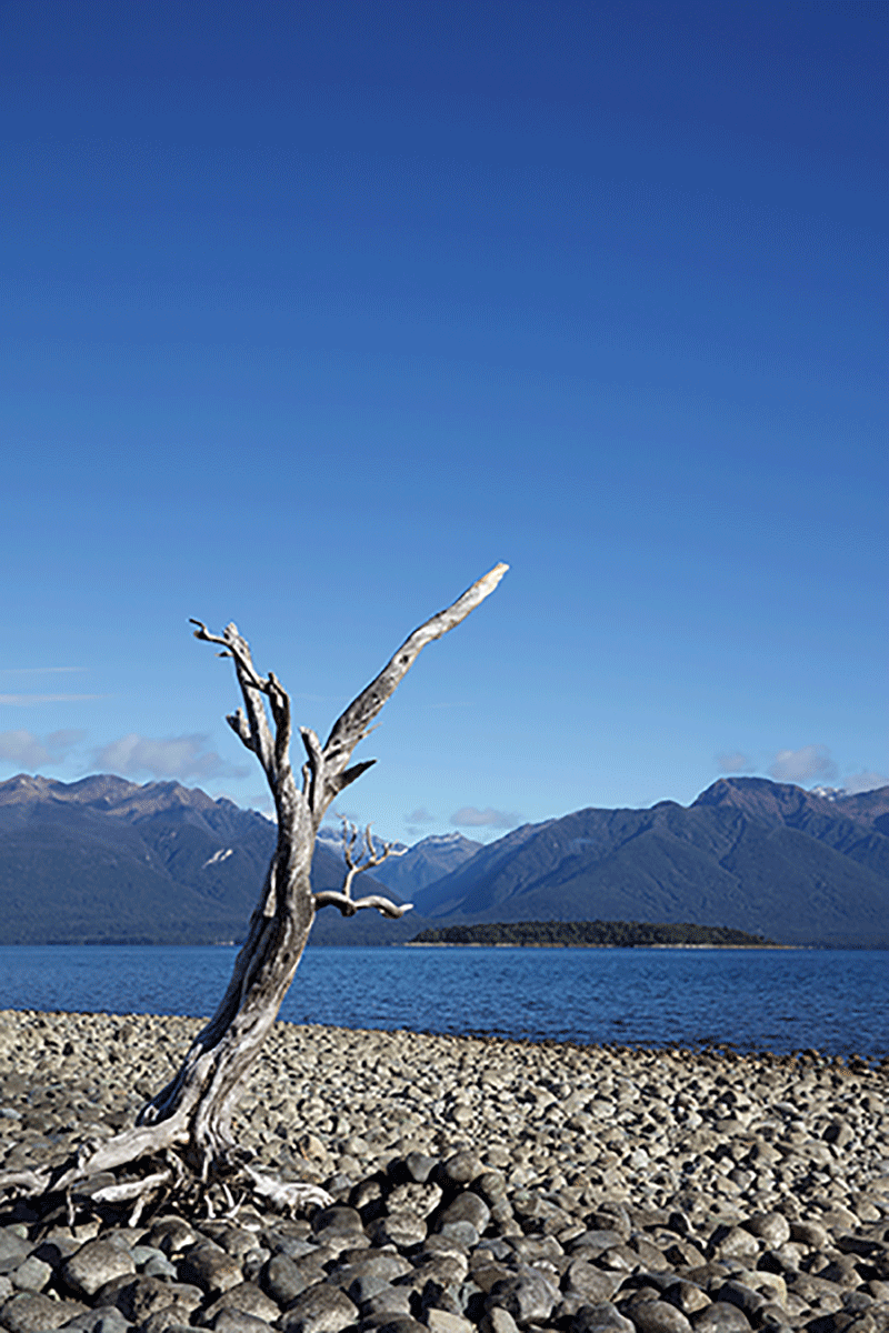 New-Zealand-Outtakes7X5A0833.png