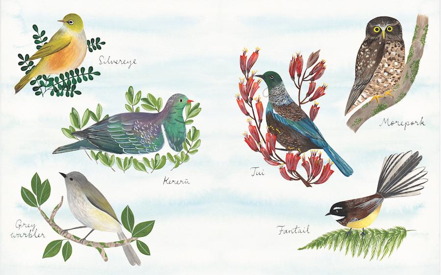 FINAL-VERSION-Birds-double-page-1.jpg