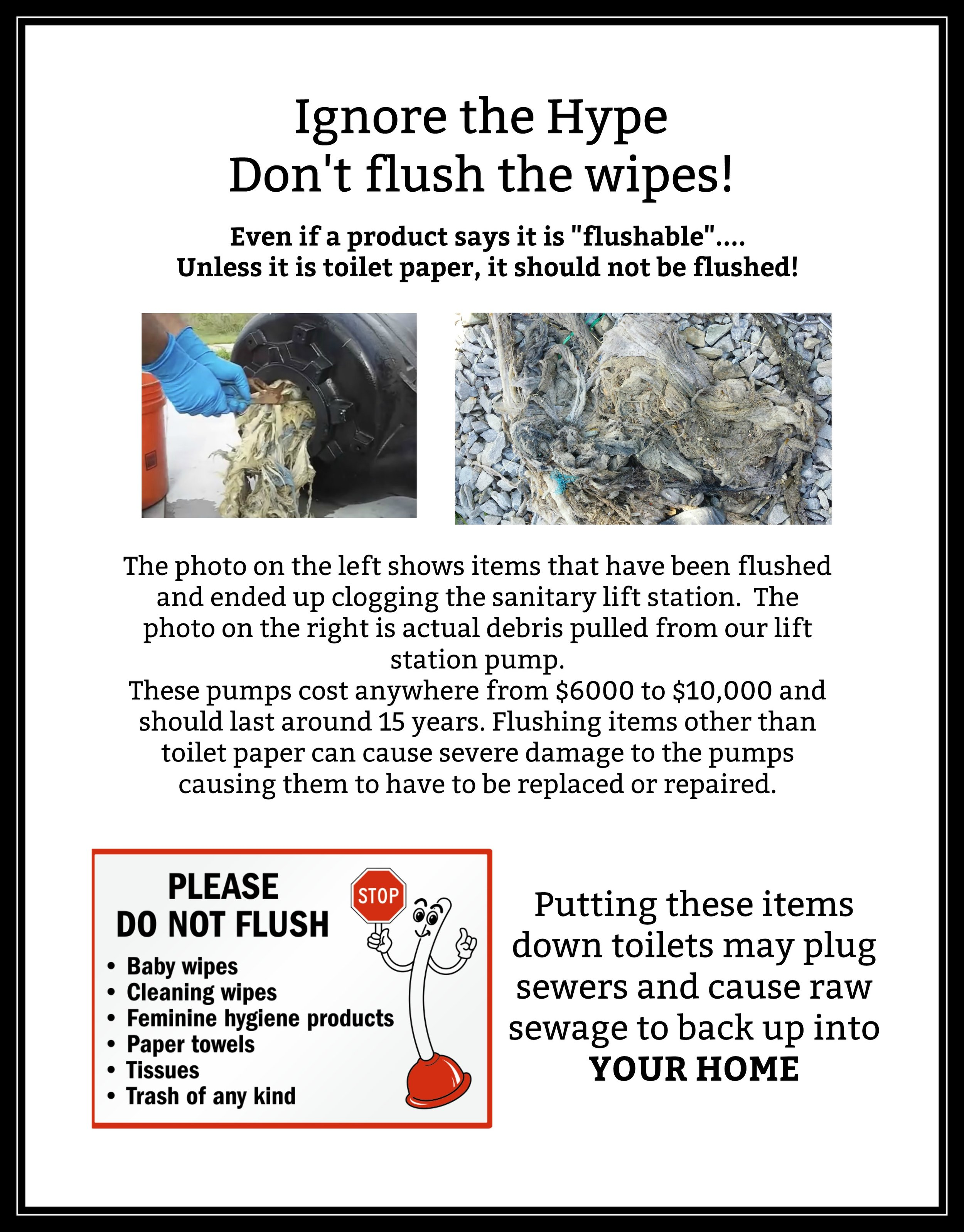 Don't flush wipes with frame.jpg