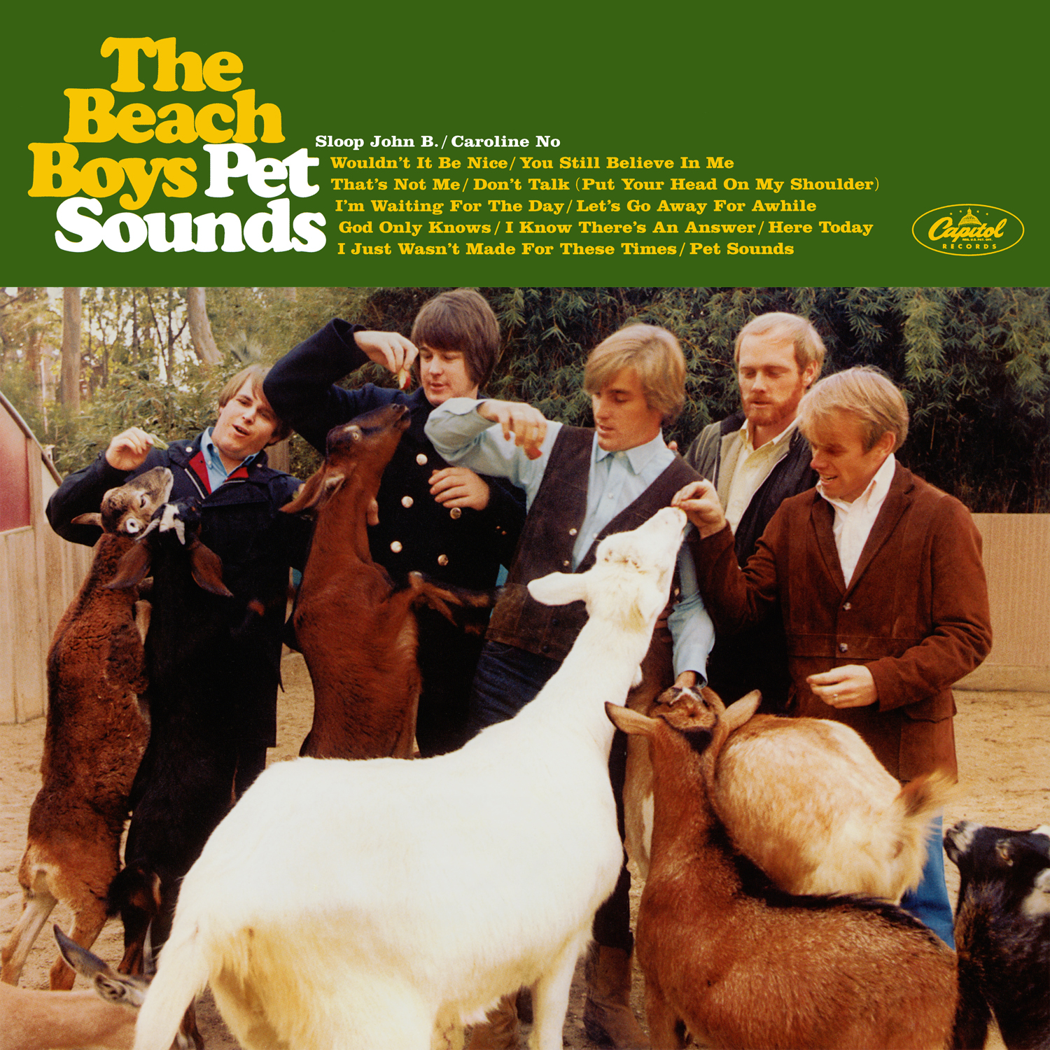 Jeff Tamarkin Pet Sounds Interview