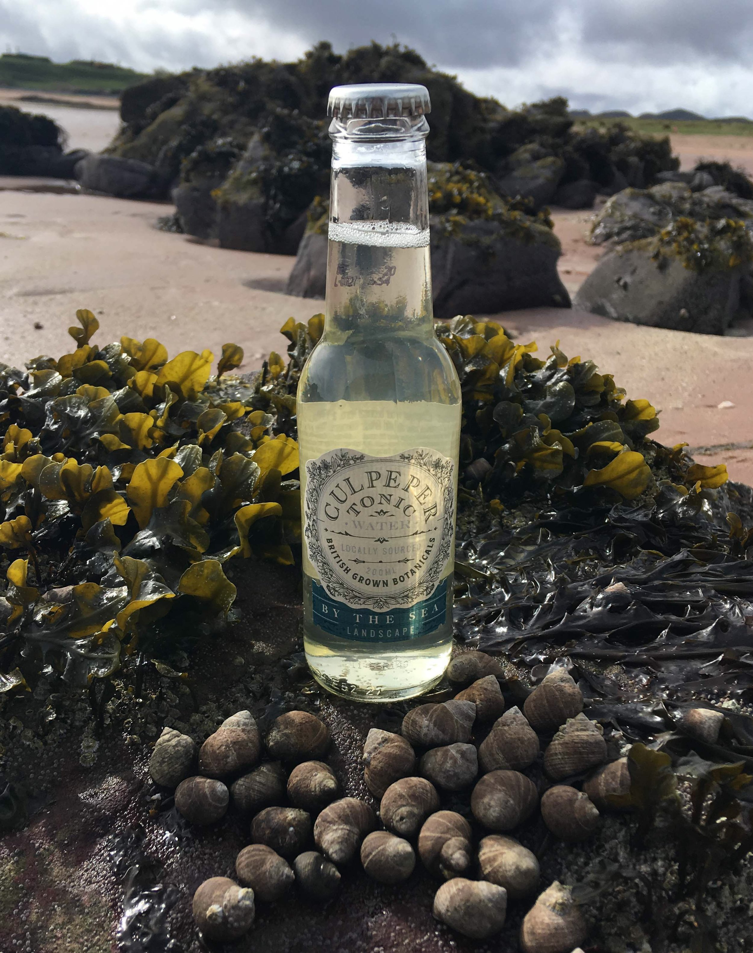 by the sea - By the Sea combines samphire with sugar kelp to create a unique tonic that is refreshingly smooth and citrusy with a hint of sea-salt.By the Sea is a versatile tonic water which works well with most gins and vodkas. It is particularly delicious with maritime or citrus spirits. Some of our favourite combinations are Harris Gin, Edinburgh Gin Seaside, Hills and Harbour Gin or Gairloch Coastal Gin (Badachro distillery)