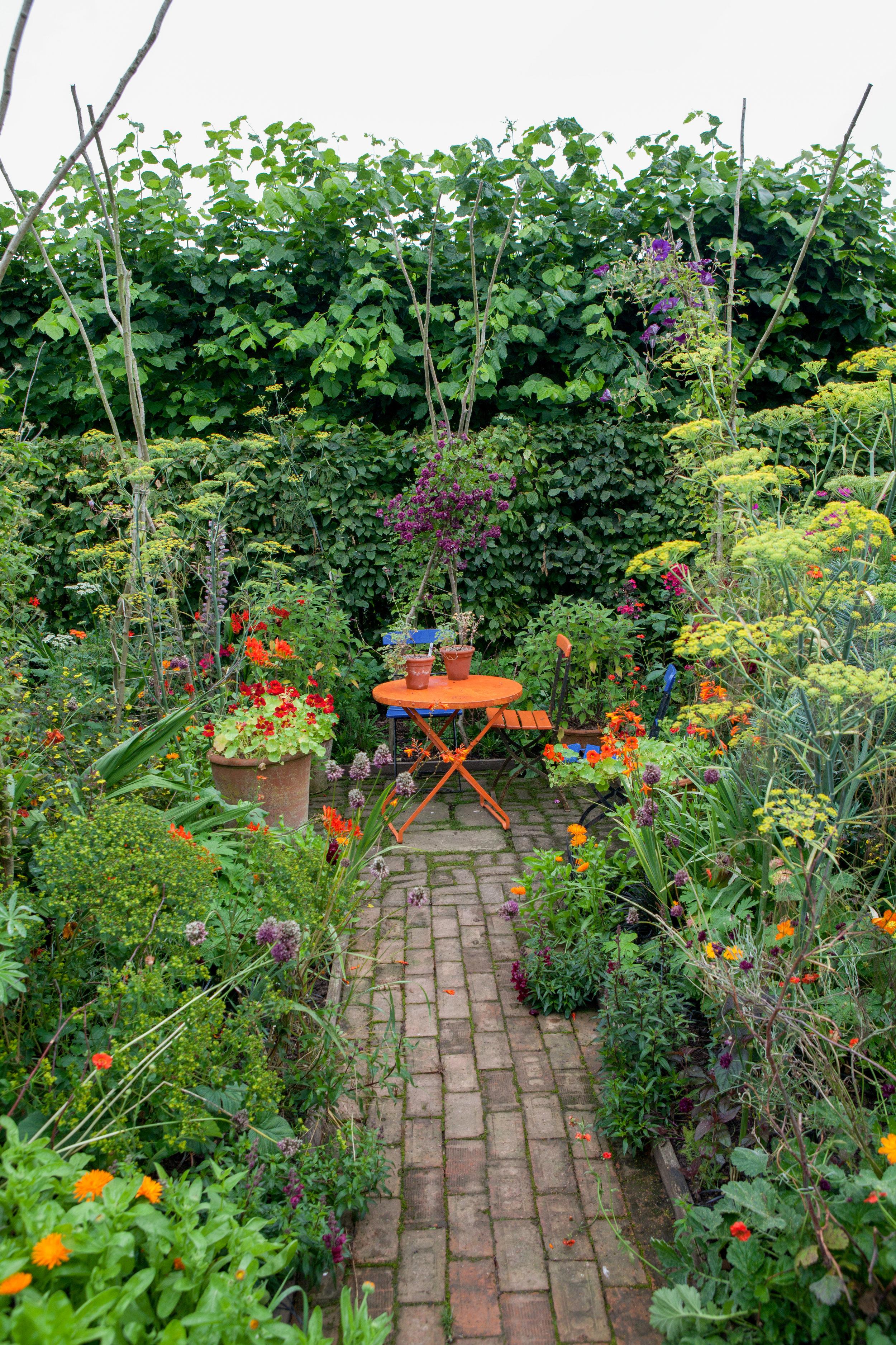 20120822-Longmeadow garden august-13.jpg