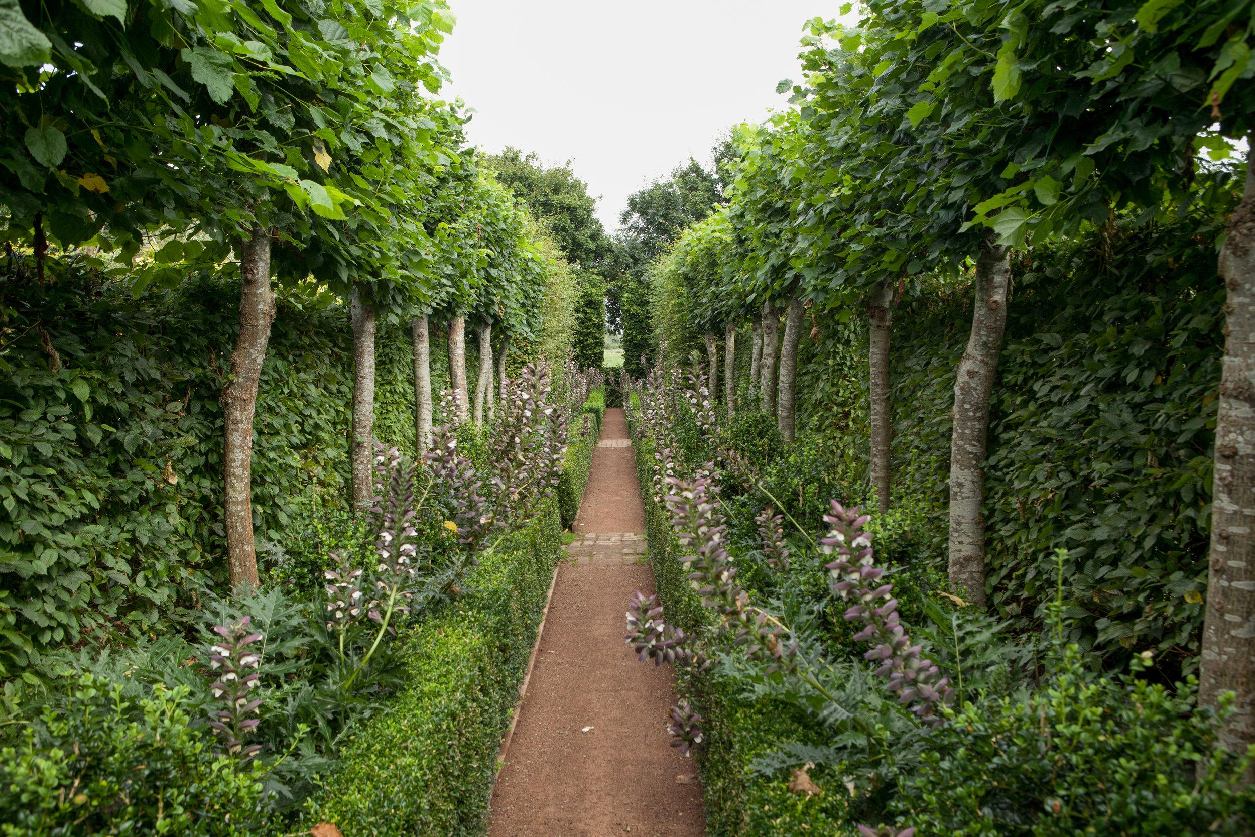 20120822-Longmeadow garden_-15.jpg