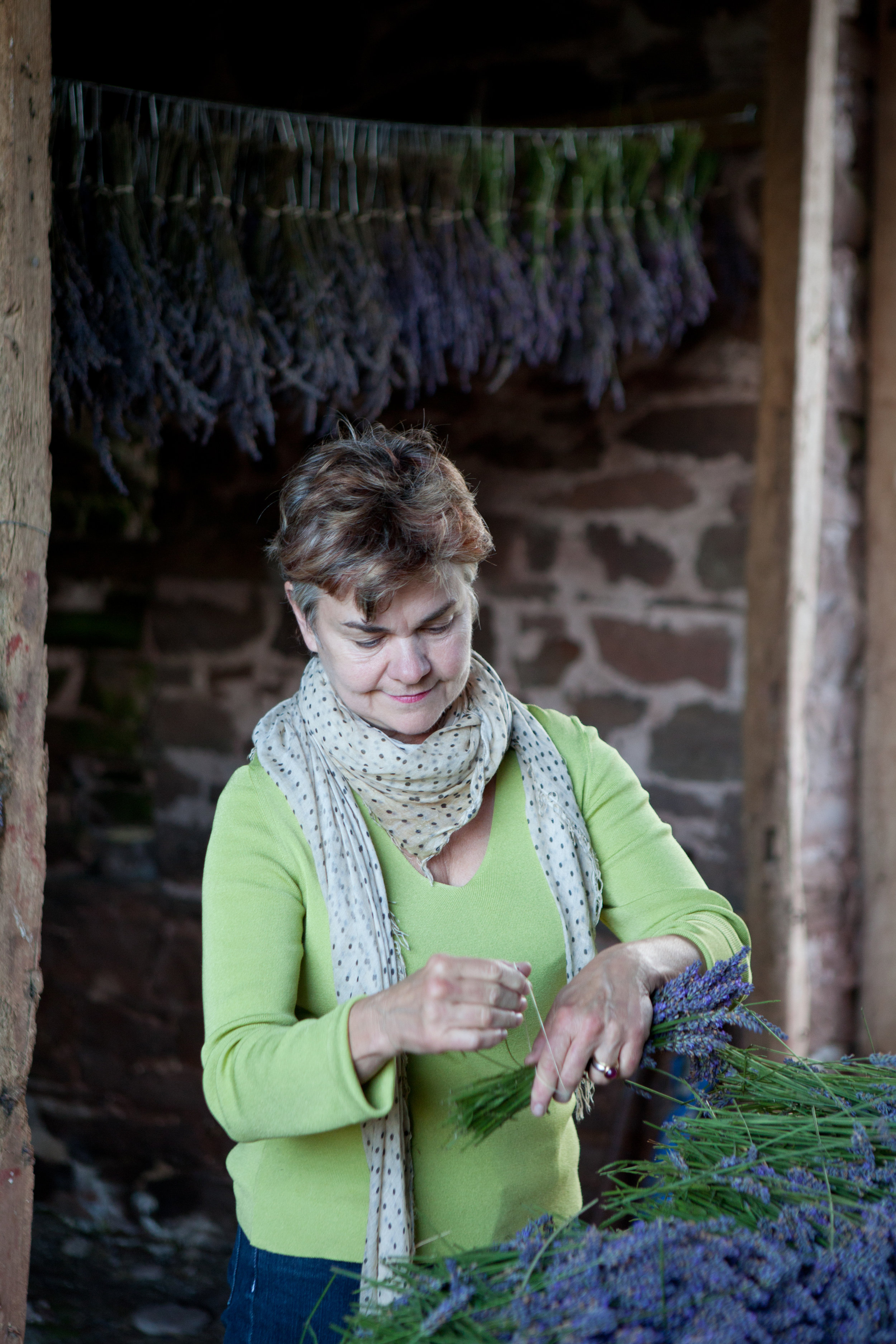 Welsh lavender.jpg