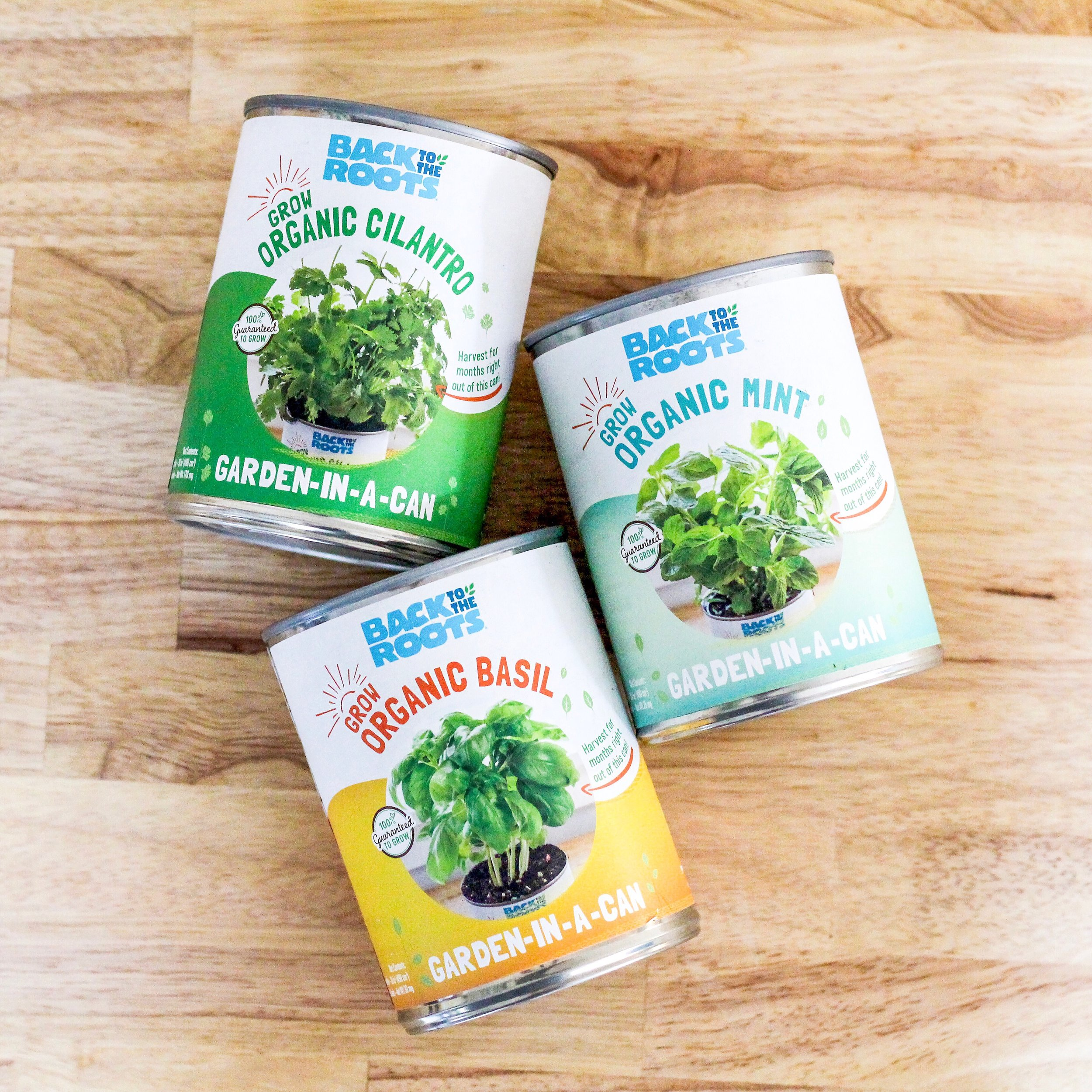 Back to the Roots : Garden-in-a-can