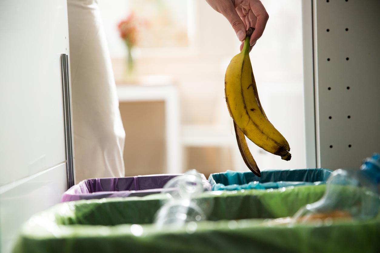 recycle-your-banana-peels-plant-fertilizer