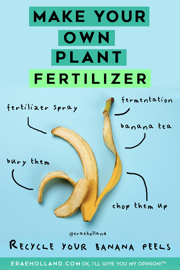 recycle your banana peels #plant #fertilizer