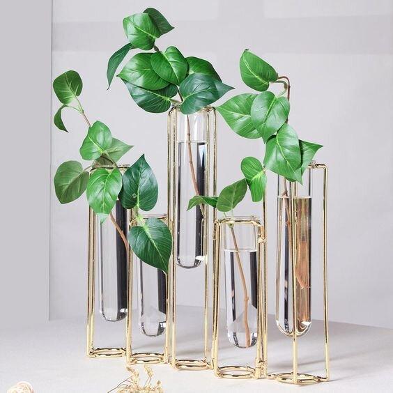 multi-tube water propagation vase