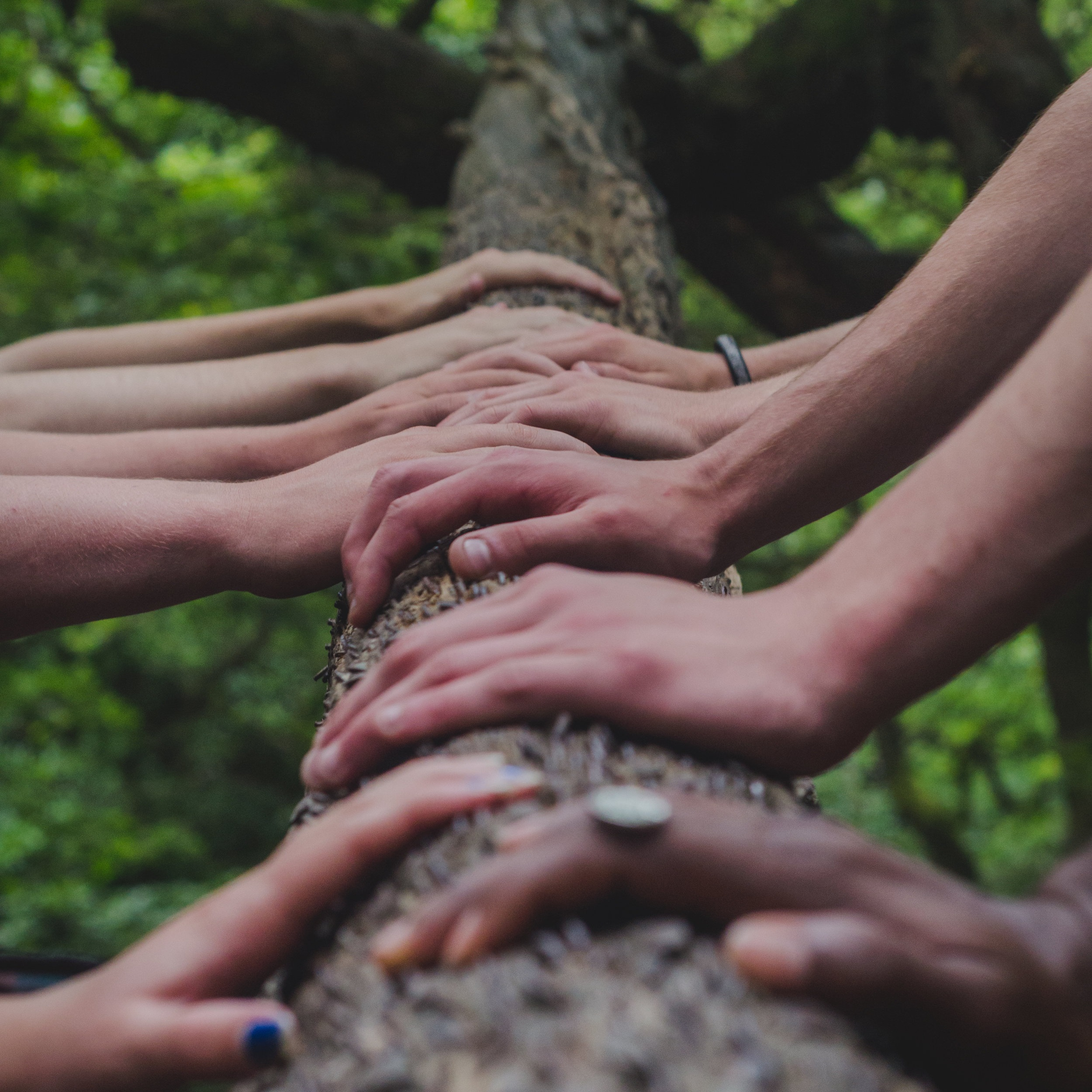 Reiki Share - All are welcome. No Reiki experience requiredDate: October 20th at 2:00-3:30 pmPrice: Love Offering appreciated for use of space but not a requirement