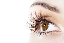 Lash and Brow Care -