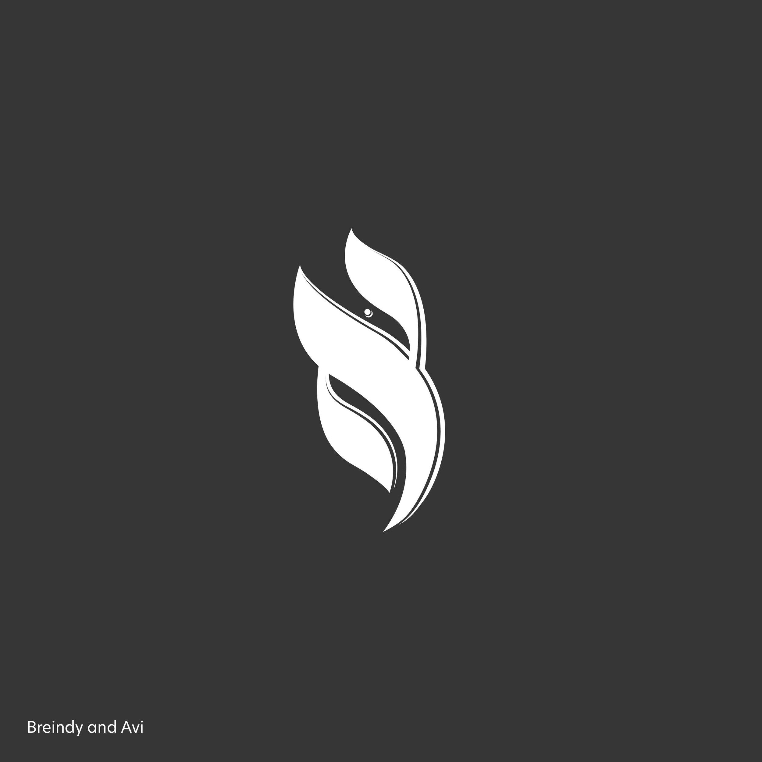 logo- breindy 2.jpg