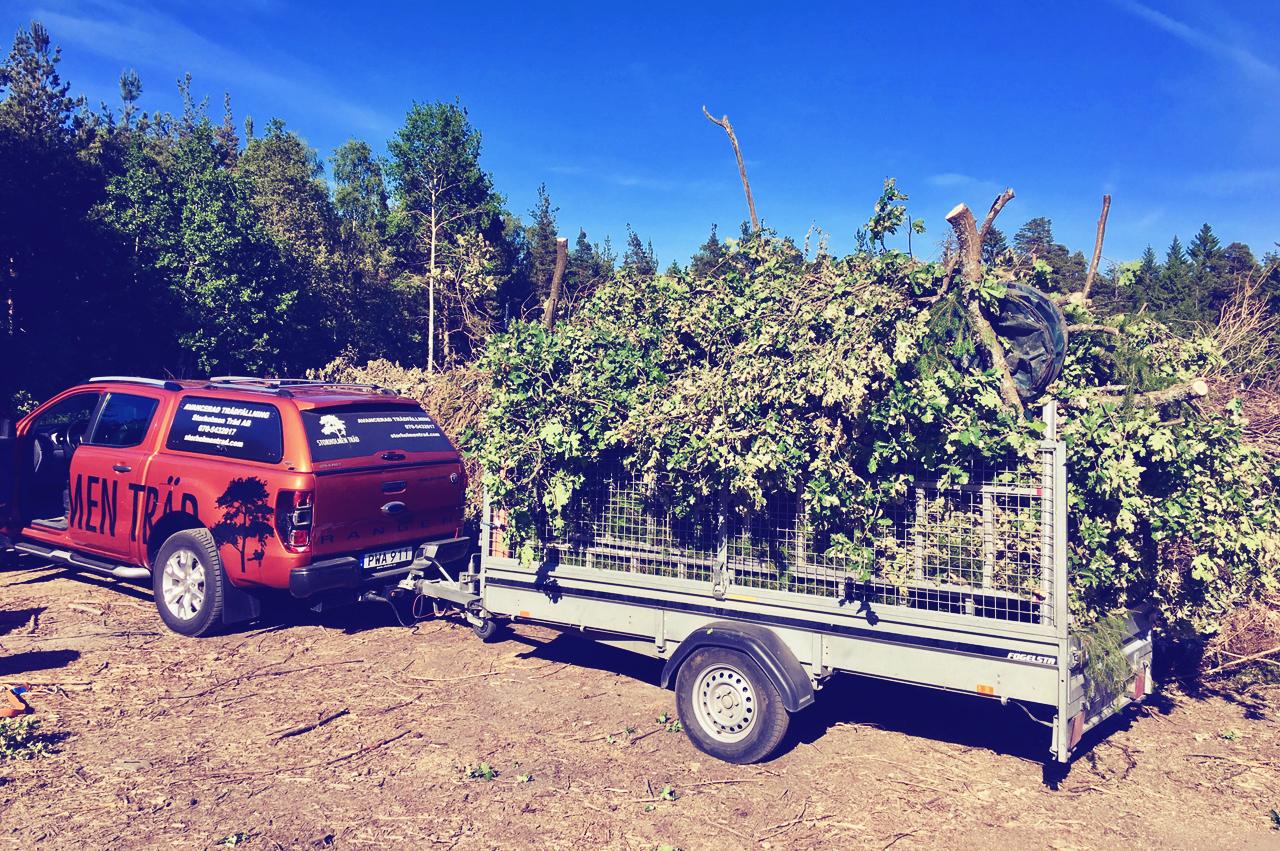 Borttransport - Antingen med kranlastbil (ca 30 m3) eller i släpvagn. Vi rekommenderar den lösning som passar bäst, till lägst pris. Om ris och stamdelar skall flyttas längre än 20 meter från trädet tillkommer uppläggningstillägg.