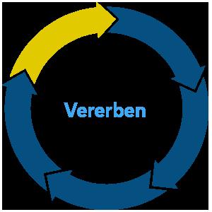 vererben.png