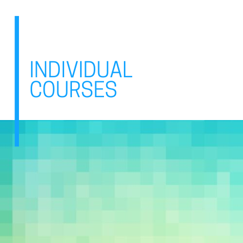 Individual Courses (2).png