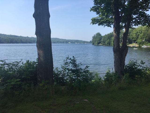 Lake through trees (Granite).JPG