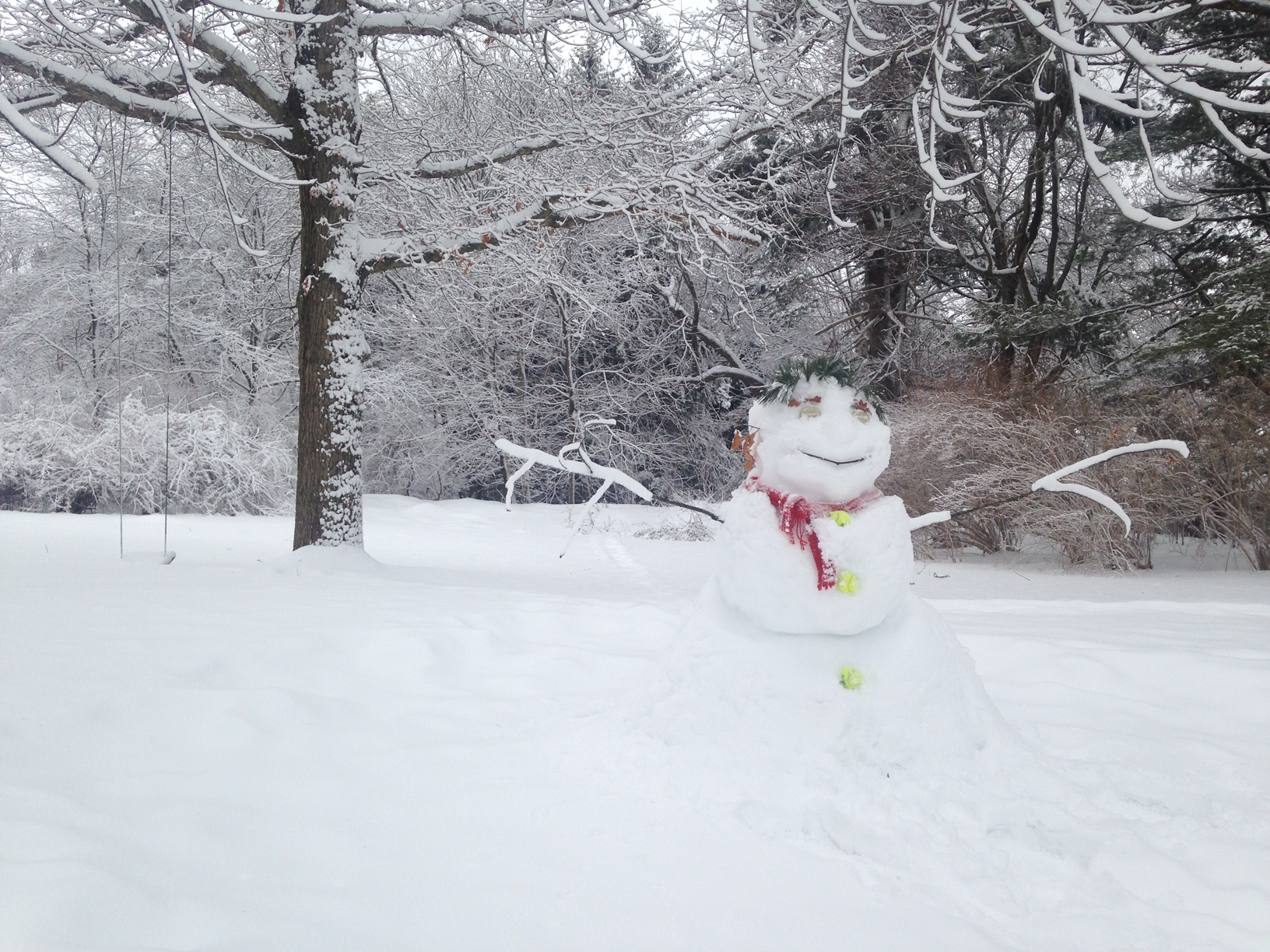 Snowman in Andover, Mass. (Ned Rousmaniere)