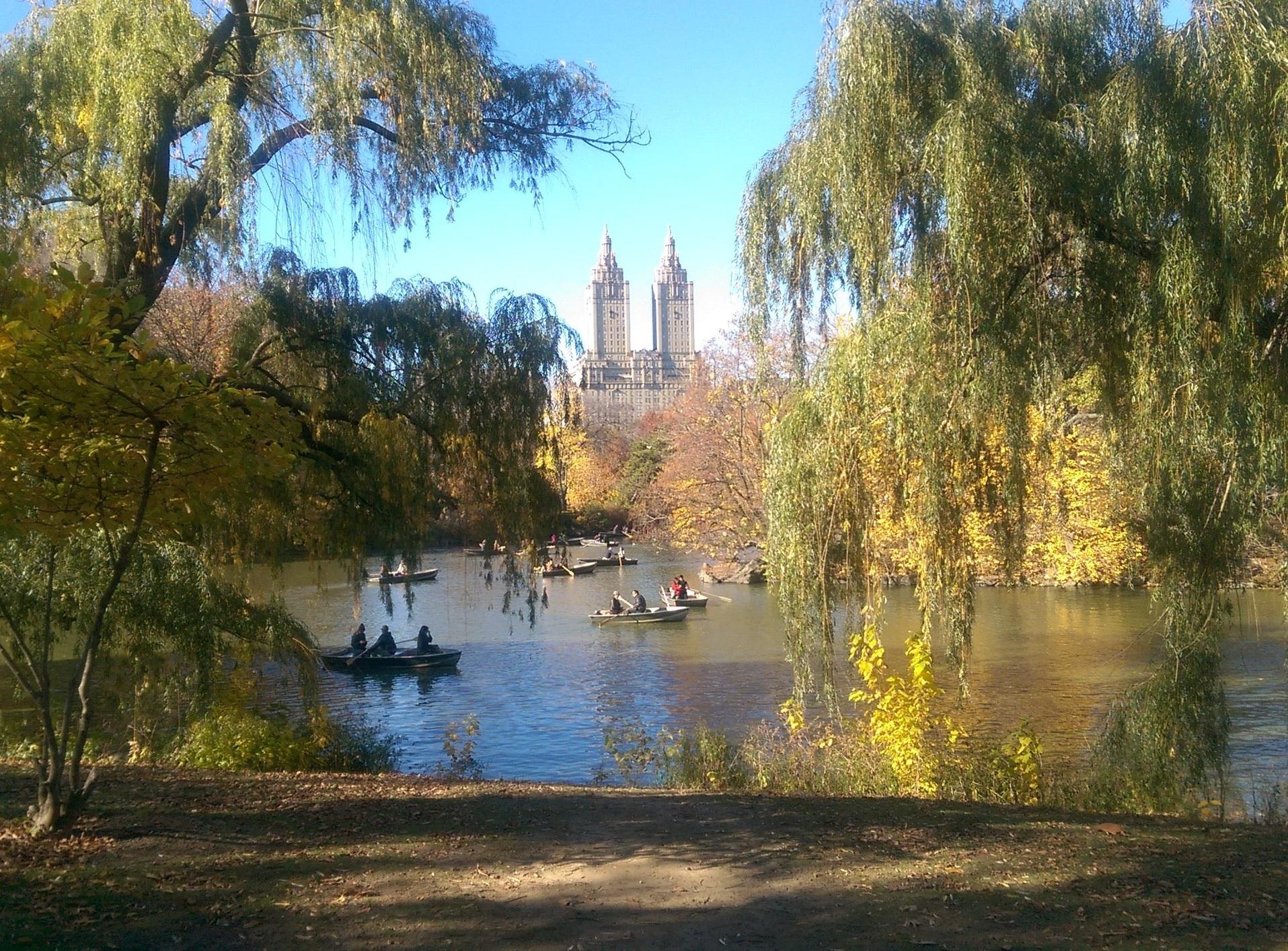 Central Park in Manhattan (Joe Rousmaniere)