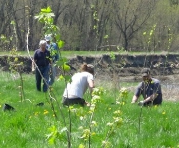 Treeplanting alongside a river (Ron Rhodes)