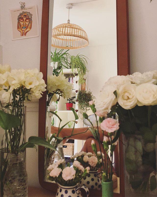 A Shakti in bloom.🌷