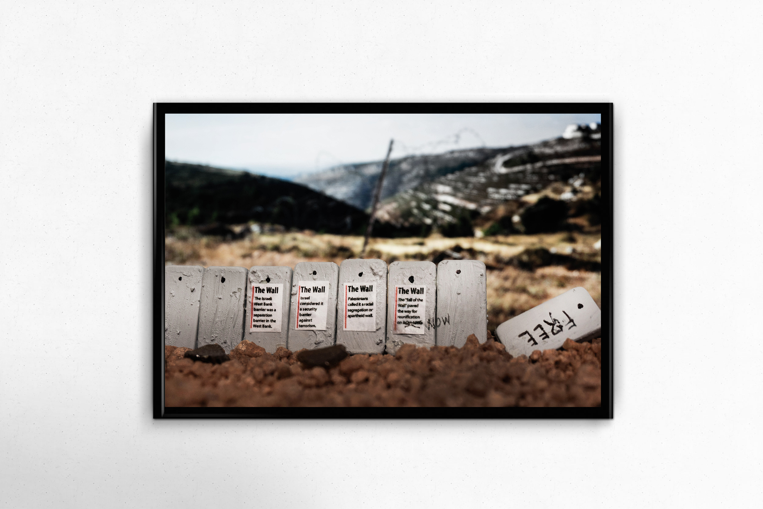 $150 donation - Crushing Walls Photo Print - No. 9 - Nearly Free14x11, unframed