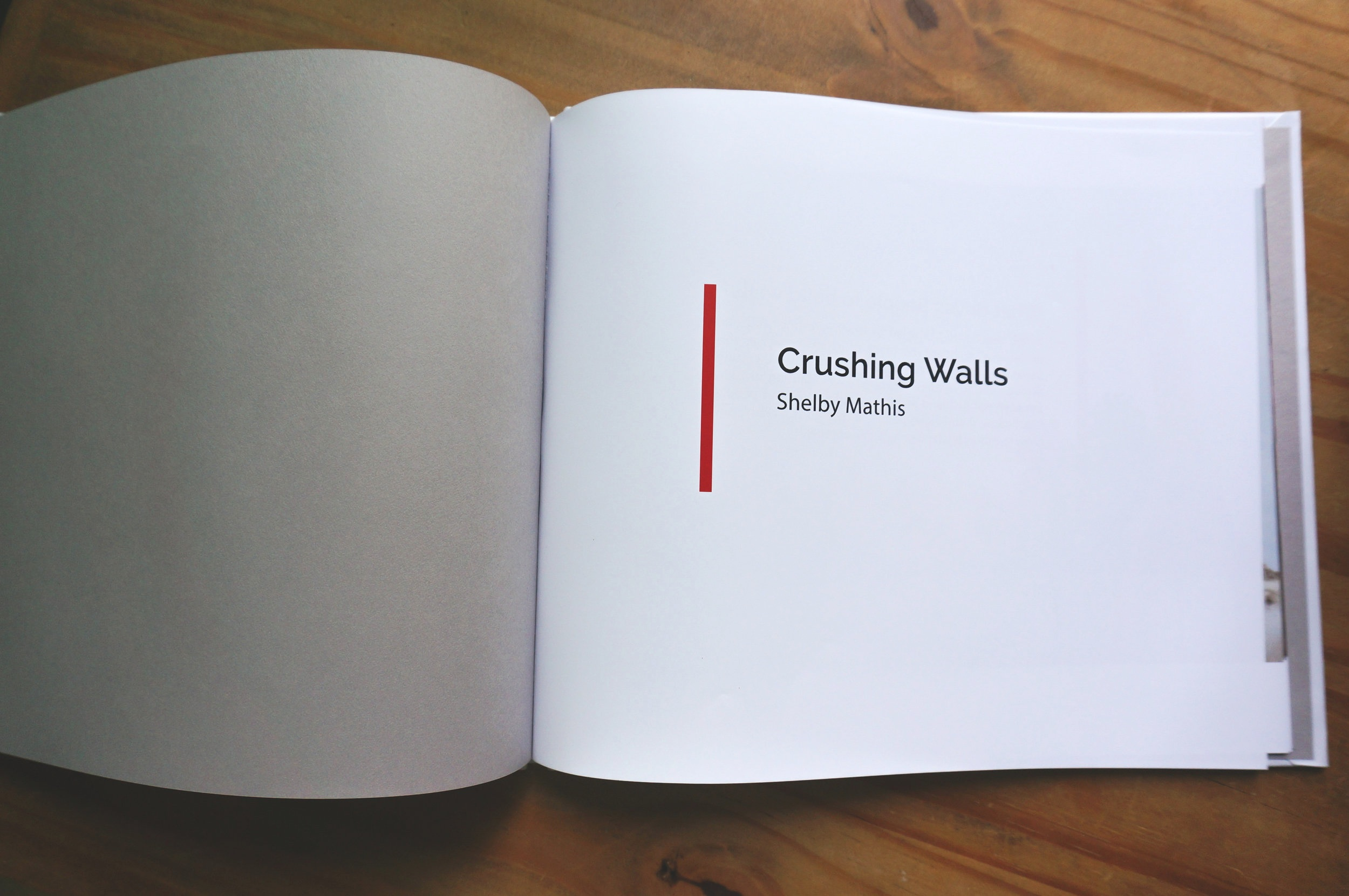 Crushing+Walls+Book+Sale+Photos-2.jpg