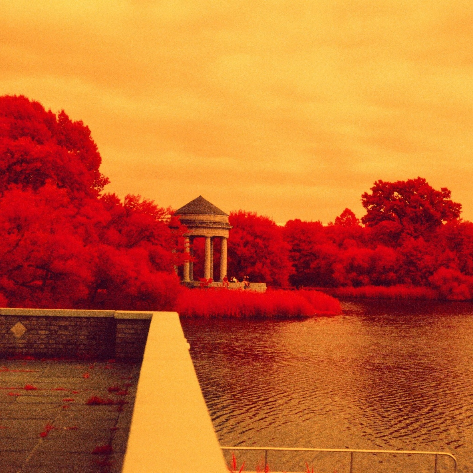 Awesome Special Effects - Infrared, Color Infrared, Sketches and More -
