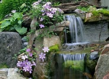 water1-368x265.jpg