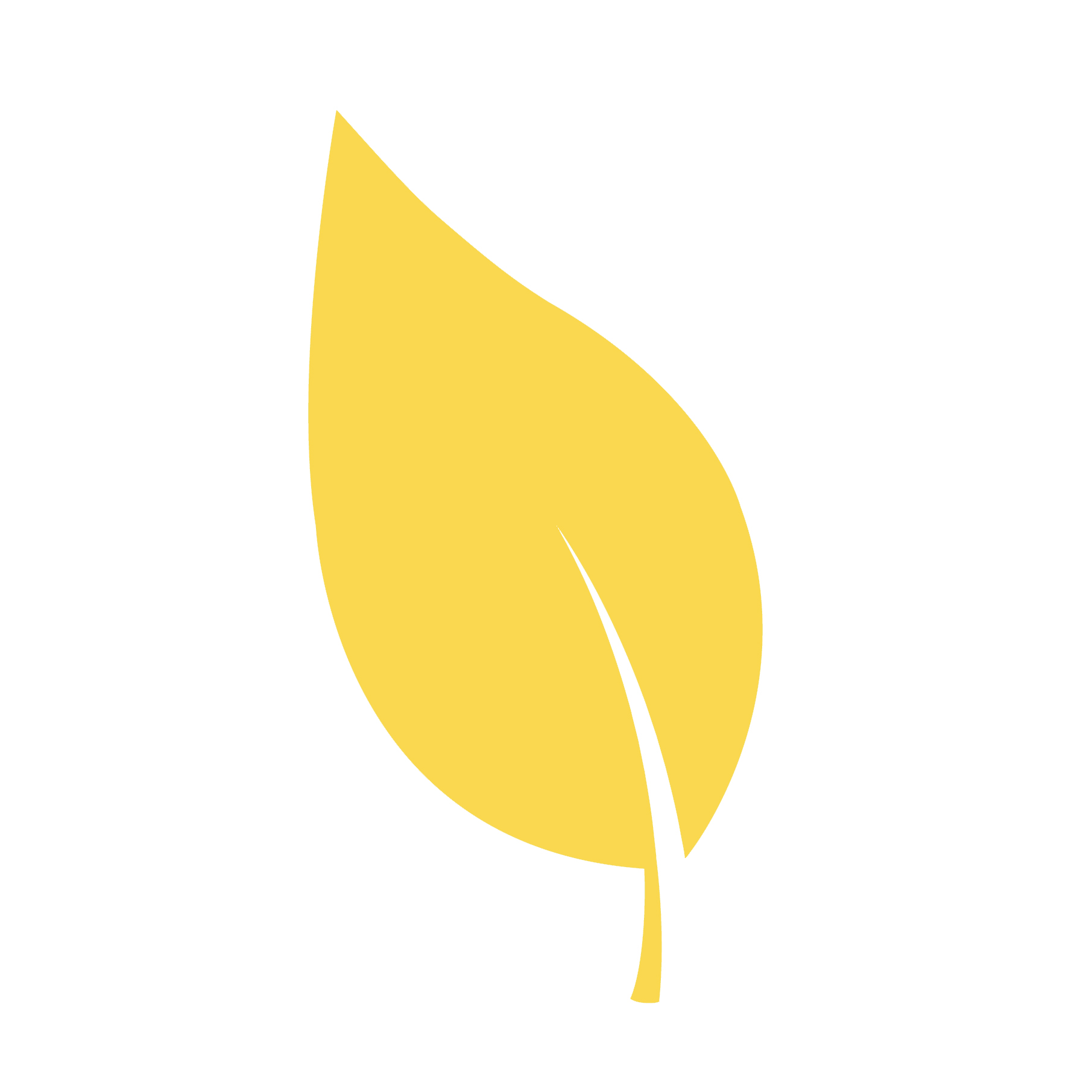 yellow leaf.jpg
