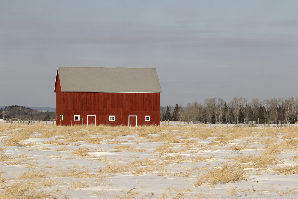 A Barn in morning hour magic light catches my eye while Birding