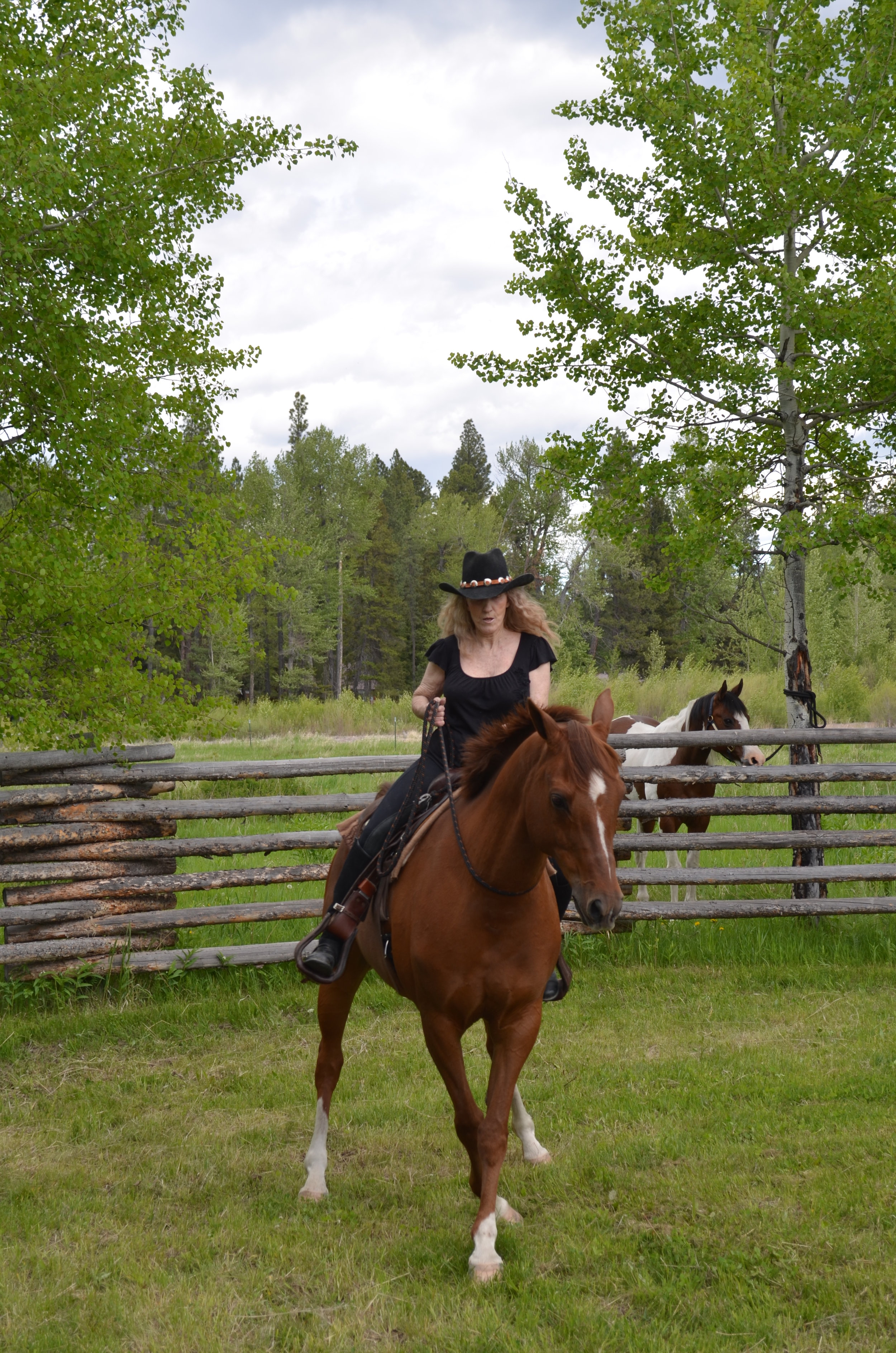 Riding Bridleless