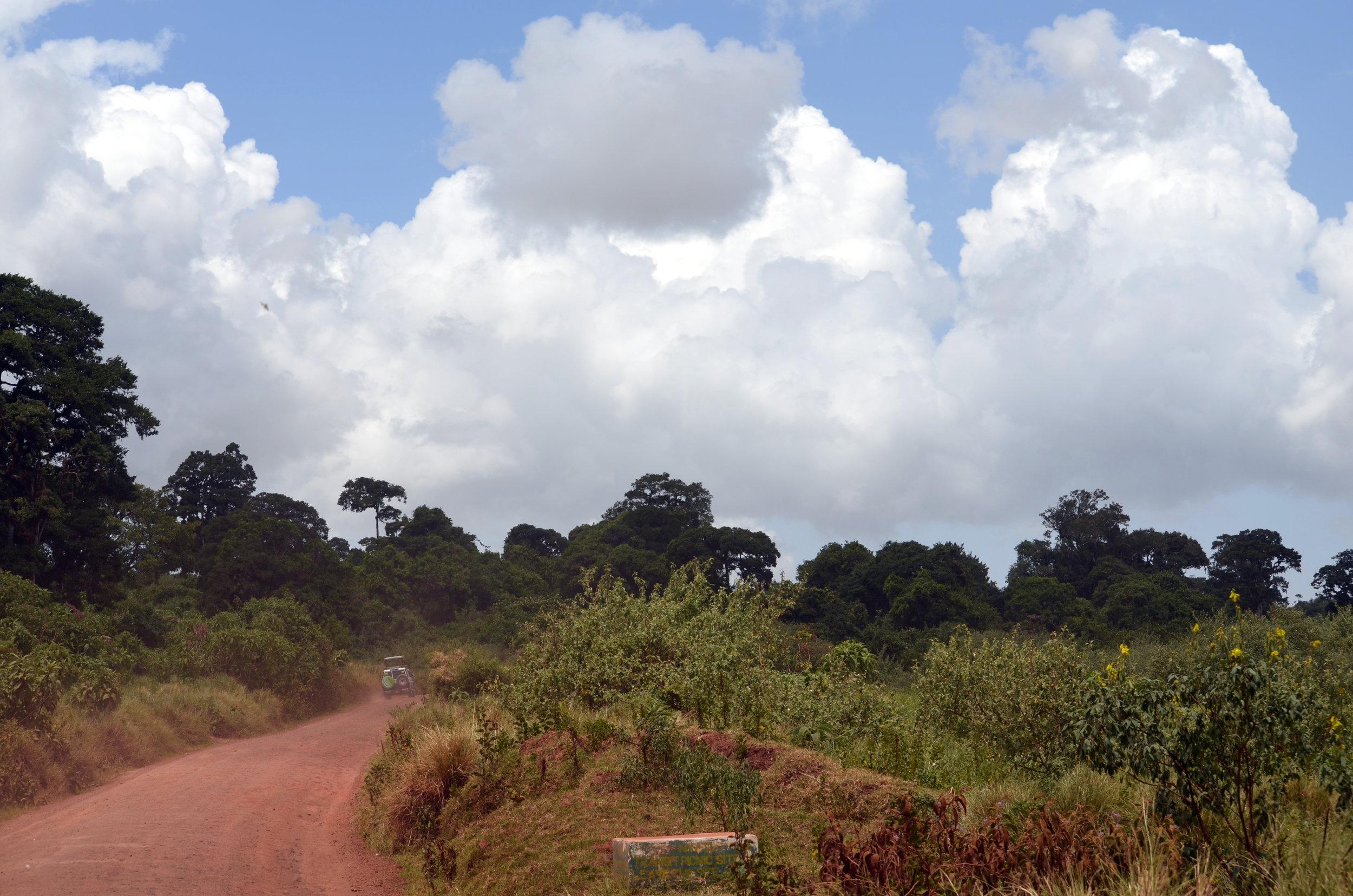 Copy of Rim of Ngorongoro Crater (AF030)