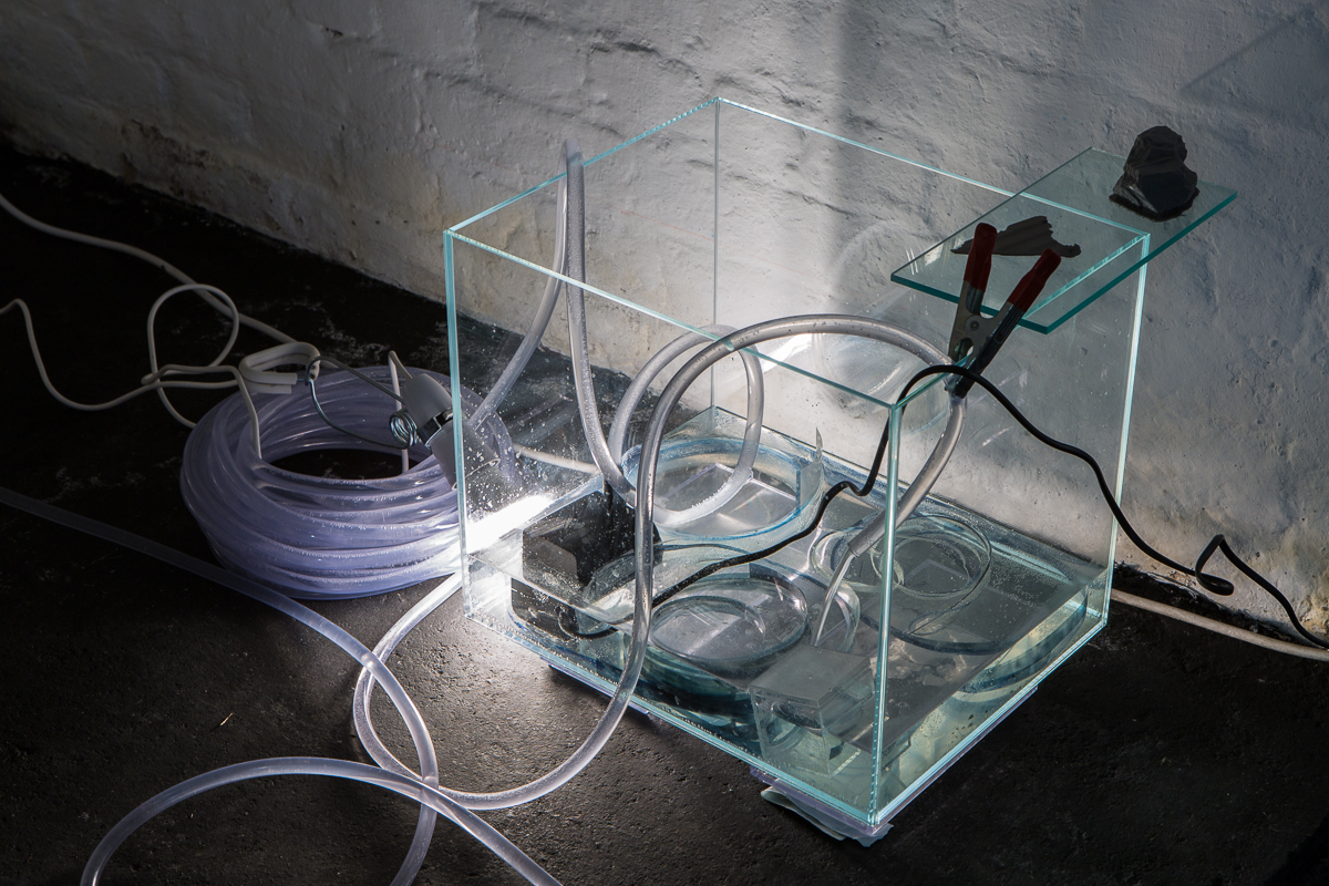 White Crypt Hannah Rowan Installation View Low Res-24.jpg