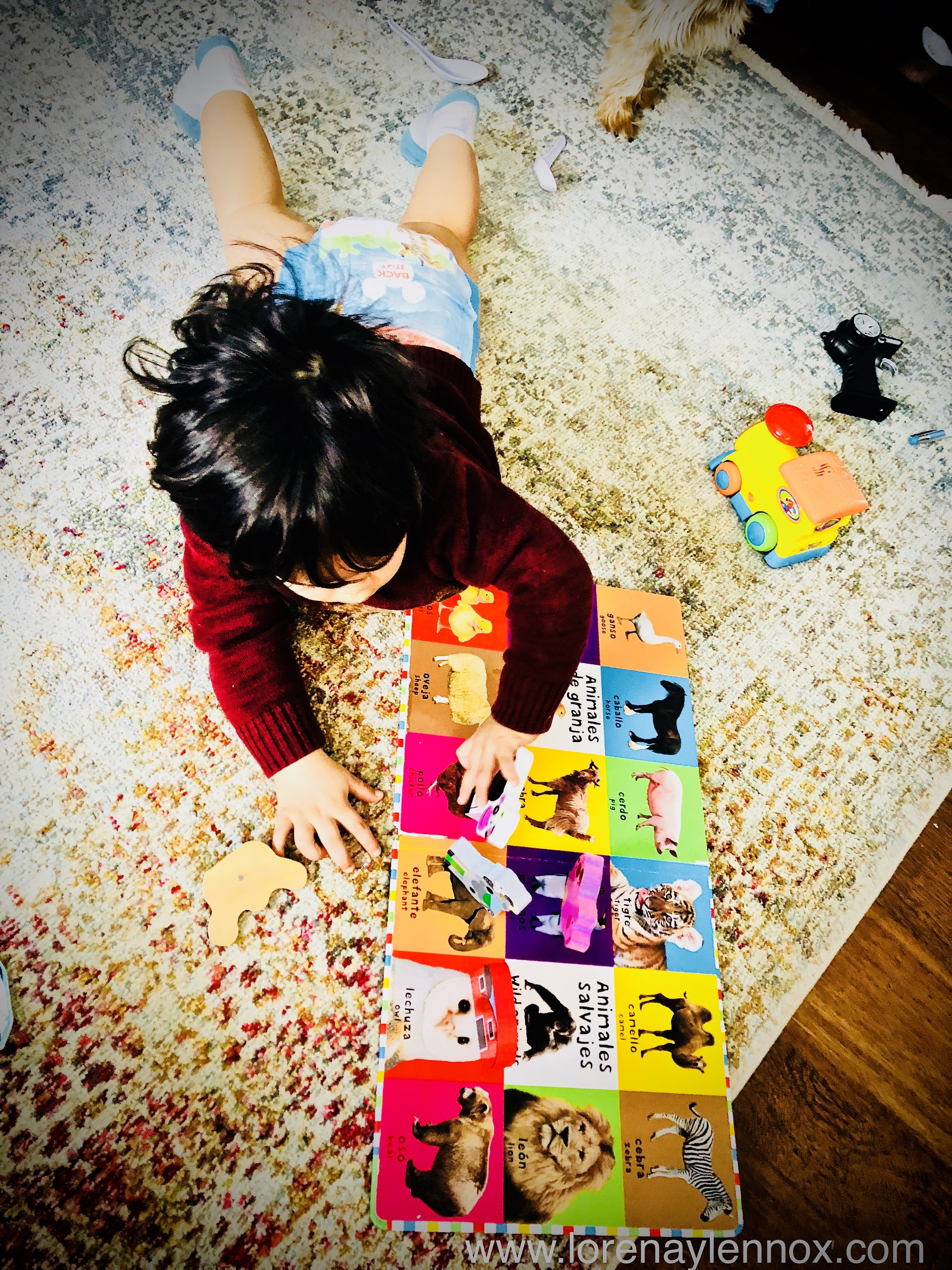 Lennox's Seven Favorite Baby and Toddler Books in Spanish