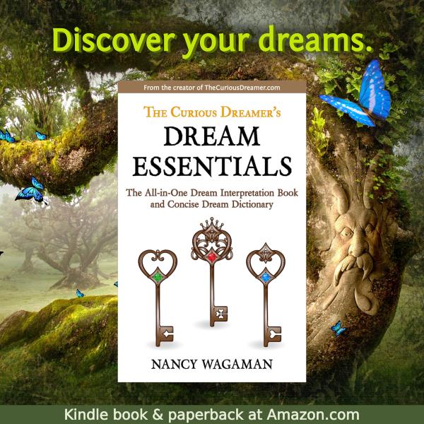 Media — The Curious Dreamer Books