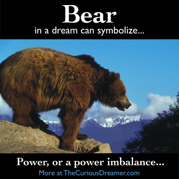 A bear as a dream symbol can represent (as described at TheCuriousDreamer.com): Power, or a power imbalance; the use of power, such as in aggression or protection; having too much or too little of one of these qualities. If you dream about this animal, pay attention to what it was doing or any particular characteristic that stood out. Read more at the #free dream dictionary on TheCuriousDreamer.com and in The Curious Dreamer's Dream Dictionary book on Amazon… . https://amzn.to/2Q3vOqJ . . . #dreams #dreammeaning #dreamsymbol #dreaminterpretation #dreamdictionary #symbolism #meaning #psychology #subconscious #sleep #sleeping #bear #bears #grizzly #blackbear #power #powerimbalance #aggressive #protect #protection #fear #control #Kindle #book #selfhelp #selfhelpbook #learn #understand #improve