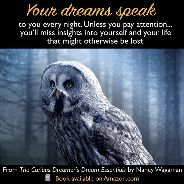 What are you missing in your dreams each night? Your dreams reveal your fears, joys, opportunities you're missing, and more... Learn how to translate their messages with The Curious Dreamer's Dream Essentials. Use the Kindle version as a handy reference on your smartphone, tablet, and computer. Paperback also available . https://amzn.to/2Wm1xX9 . . . #quote #quotes #instaquote #instaquotes #bookquotes #quotestagram #qotd #quotestoliveby #read #dream #dreams #dreammeaning #dreaminterpretation #dreamanalysis #sleep #sleeping #selfhelpbooks #nonfiction #psychology #symbol #symbolism #possibilities #meaning #learn #doityourself #selfhelp #selfcare #selfdiscovery
