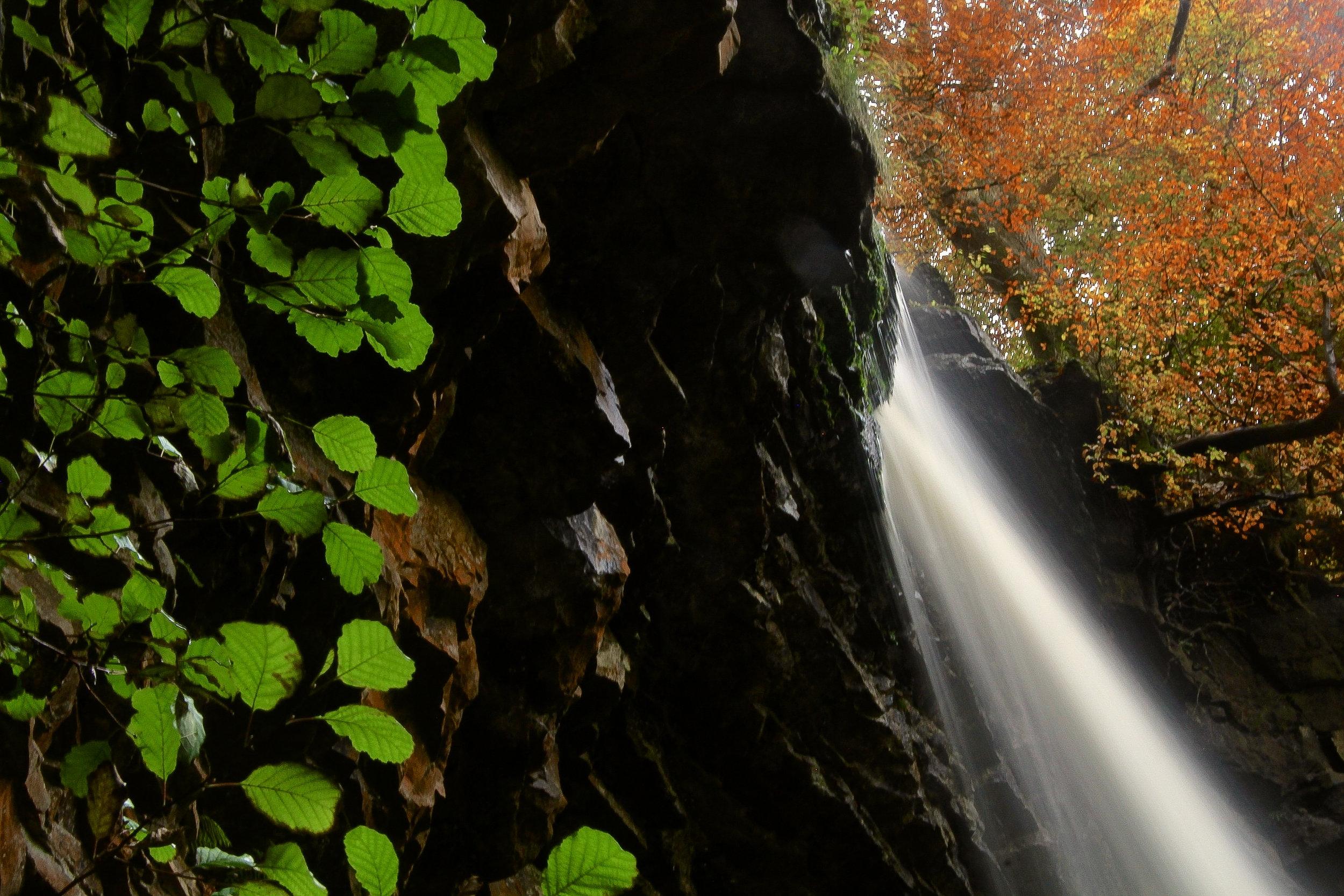 Autumn at Hardraw Force