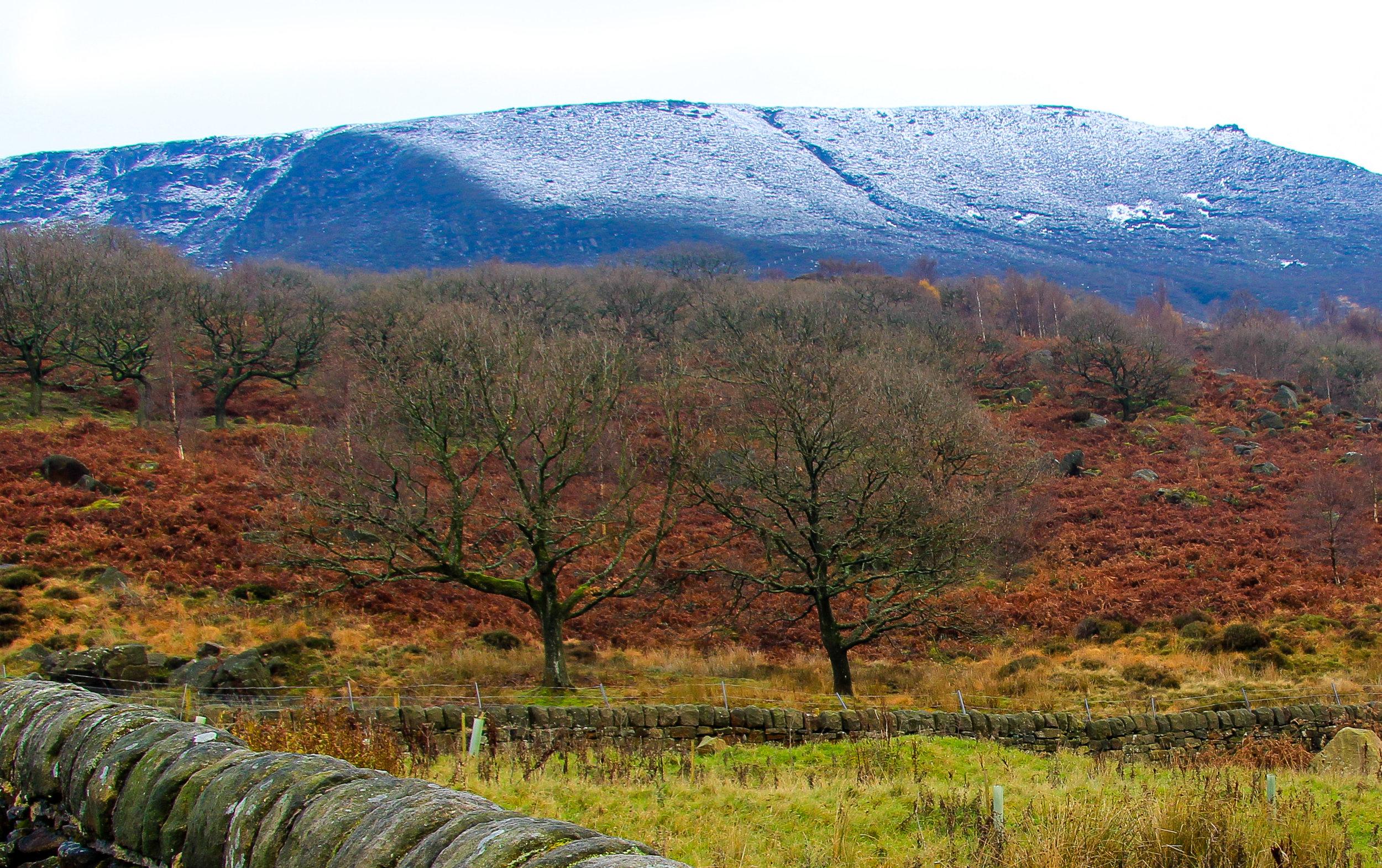 Light snow fall, Peak District