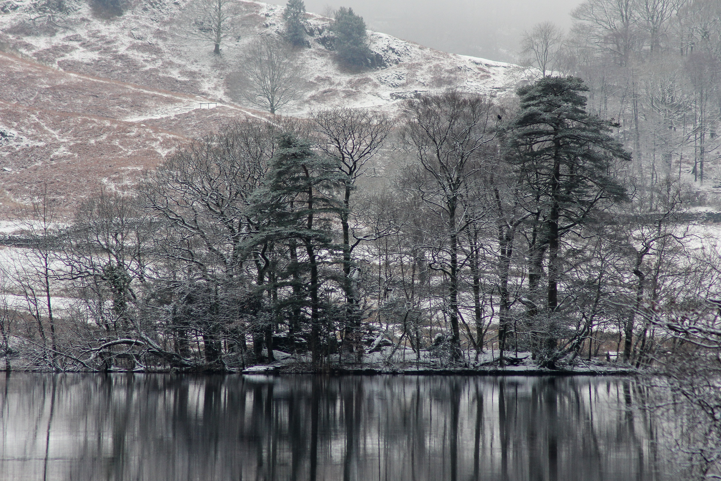 Winter at Rydal Water