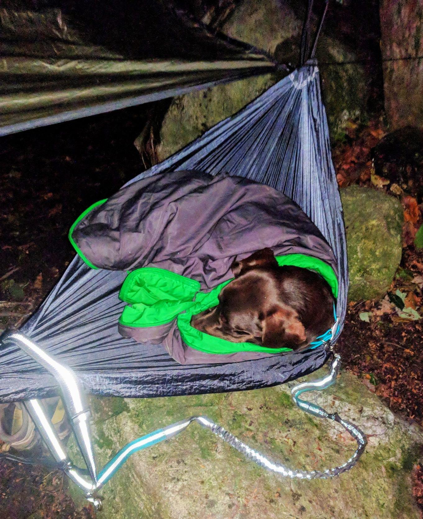 © Image of Toby in sleeping bag, courtesy of Trisha Penrod.