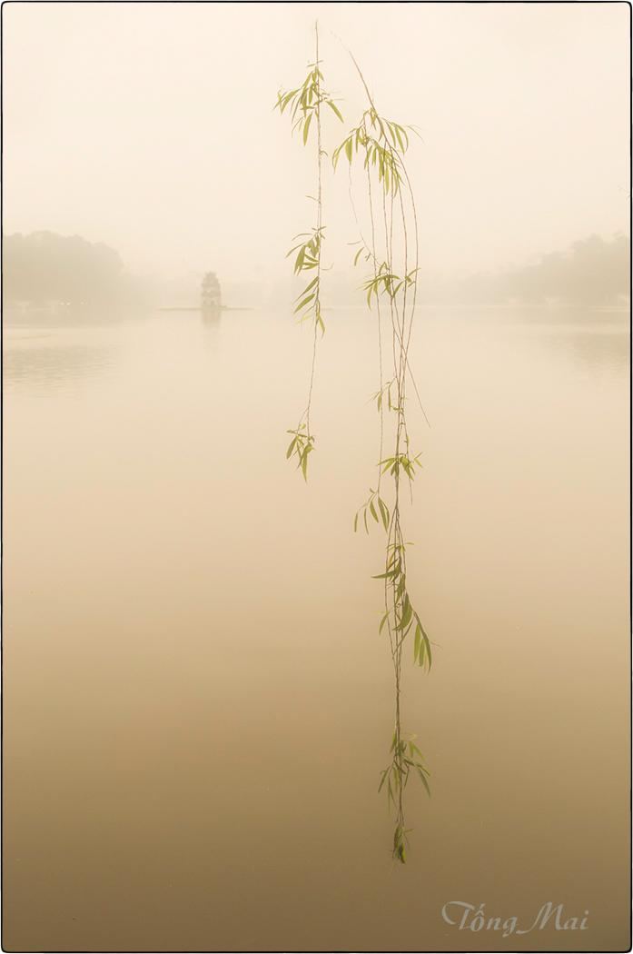Image copyright Mai Tong
