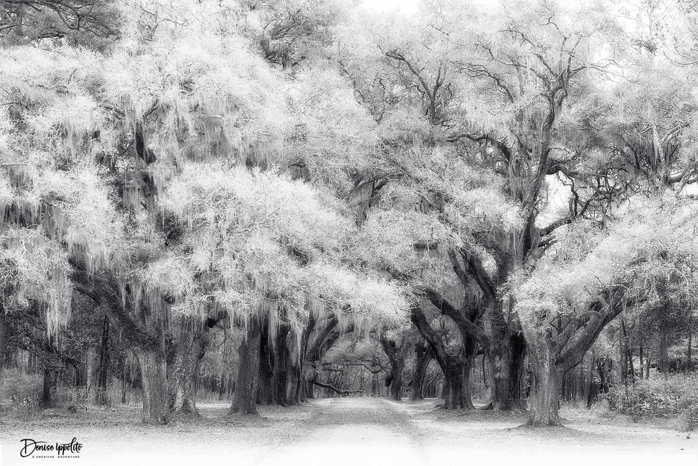 Infrared Conversion