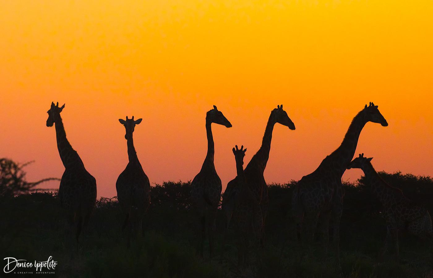 Namibia -