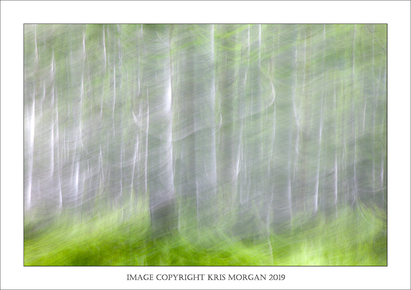 Kris-Morgans-blur.jpg