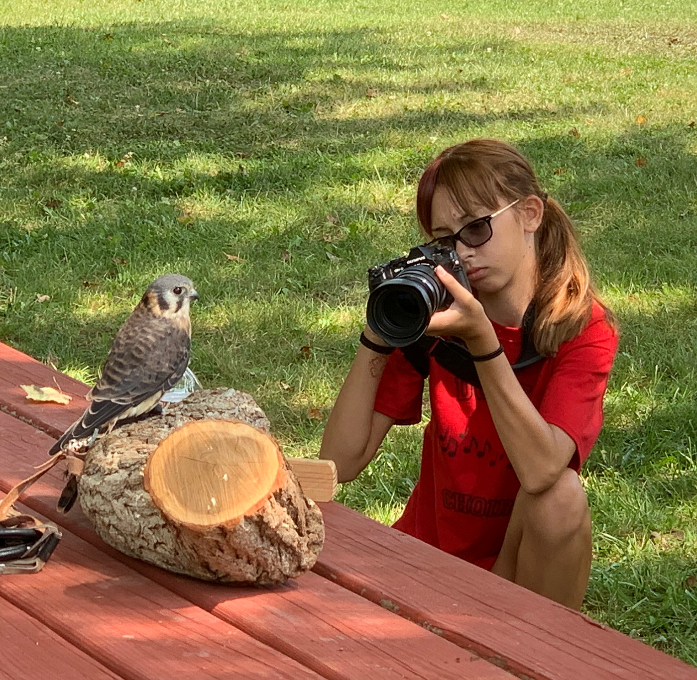 Guinevere photographing a Kestrel, image courtesy of Deb Bailey.