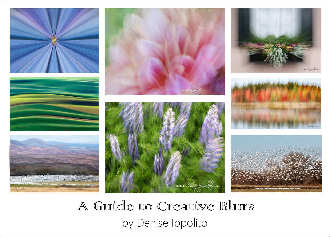 Guide-to-Creative-Blurs (2).jpg