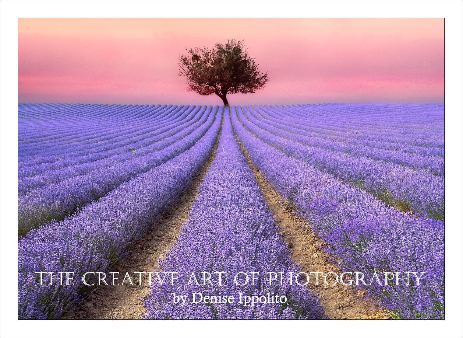 The Creative Art Of Photography - South Jersey Camera Club