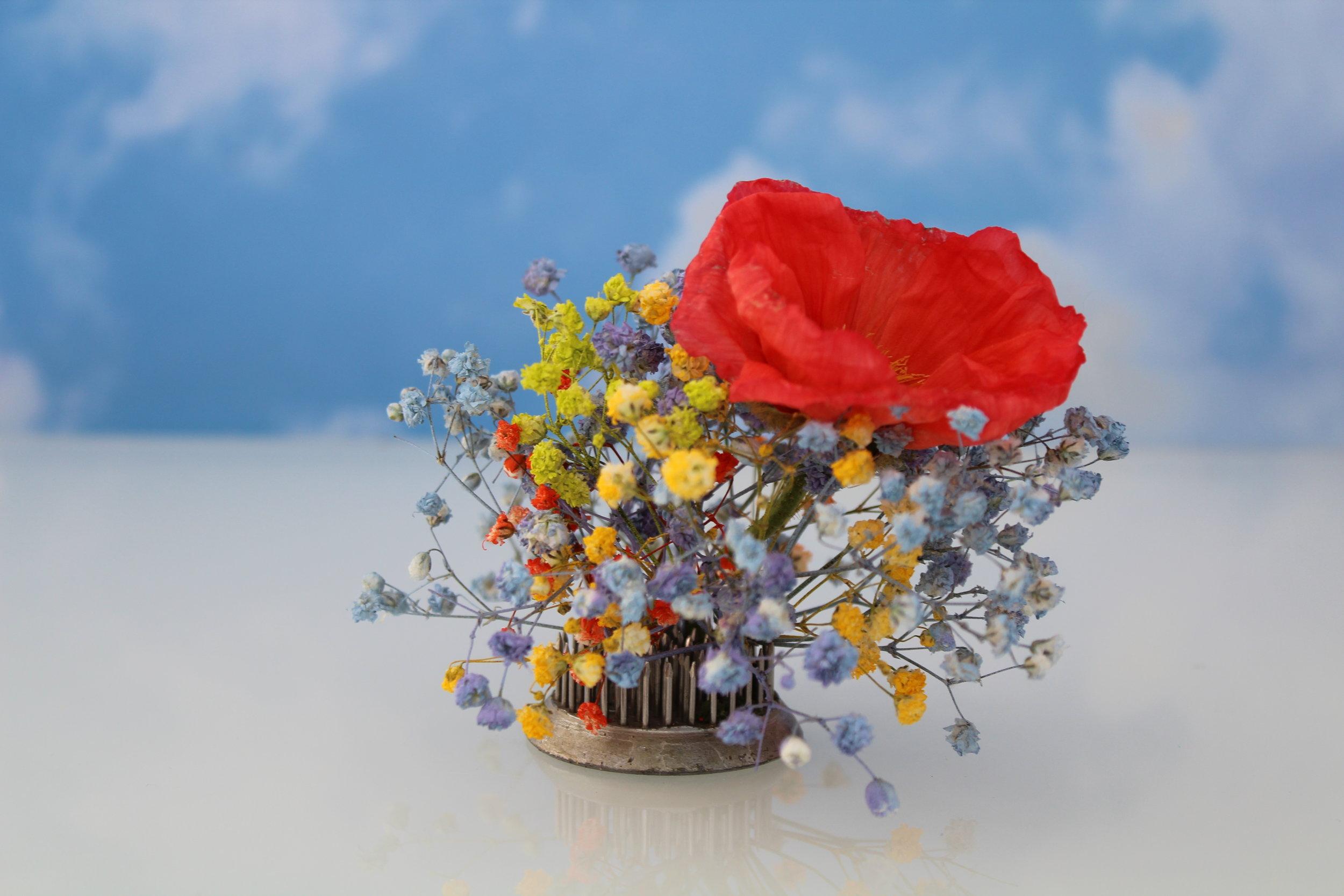 CCC © Edie Parker Flower Portrait In Bloom